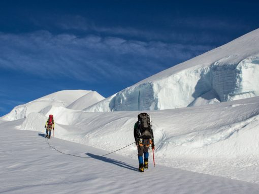 New Zealand Glacier Expedition