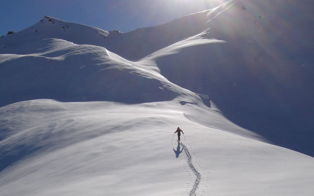 4 day backcountry avalanche course