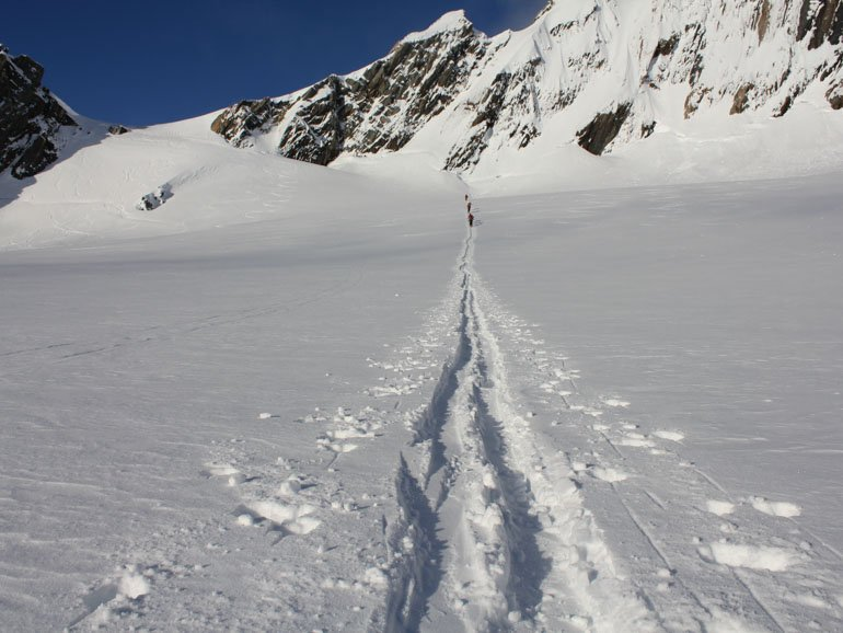 Ski touring tracks Cass valley